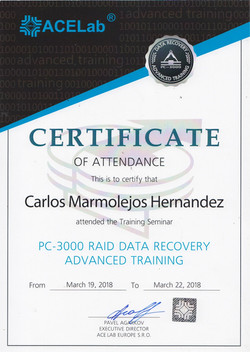 RAID DATA RECOVERY ADVANCED