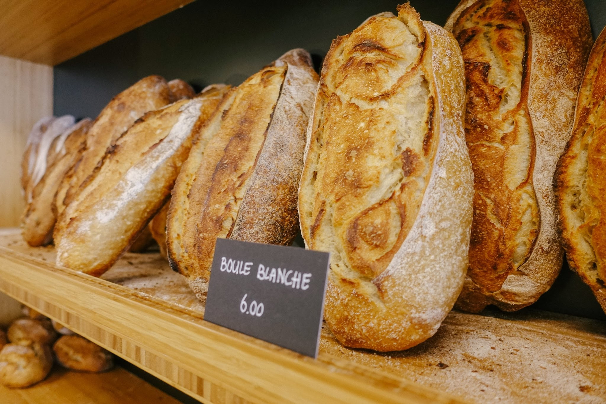 Echt Brood Beginners
