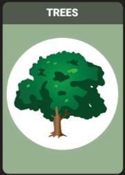 Backyard_Birding_Backyard_Cards.PNG
