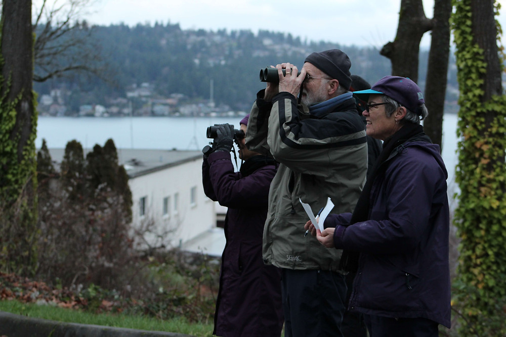 A group of birders out on a Christmas Bird Count in the Seattle area.