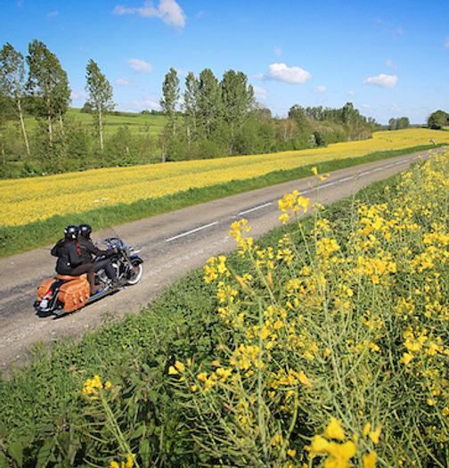France Moto Road Trip - Dans les vignes champenoises - Circuit Plages et Champagne à moto - francemotoroadtrip.com