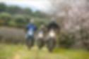 France Moto Roadtrip - Off Road - Enduro - Diagonale verte de Deauville à St Tropez