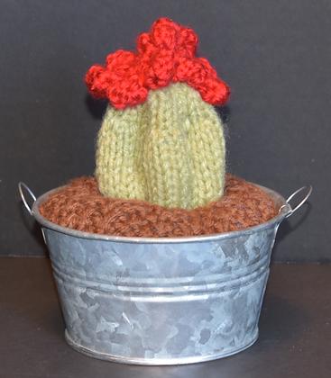 Deep Ridge Cactus
