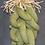 """Thumbnail: Green Chile Ristra - 12"""""""