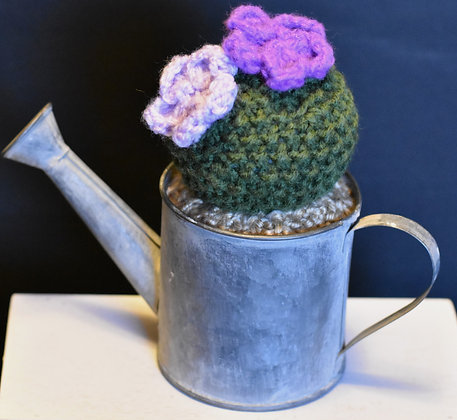 Round Seed Cactus