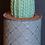 Thumbnail: Tall Ribbed Cactus