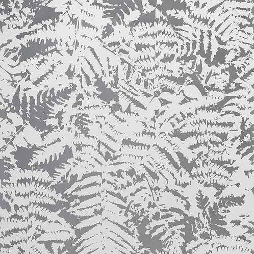 Fern - Clearing Mostra