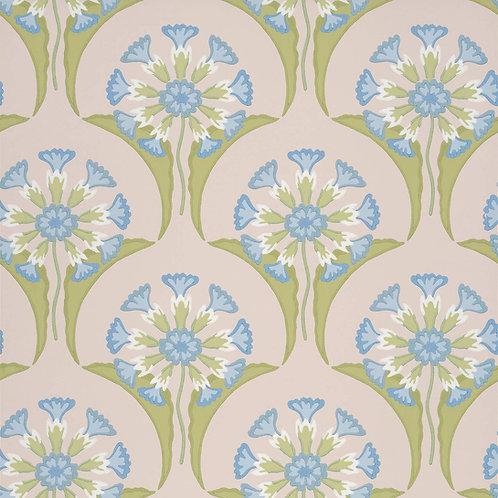 Hencroft Blue Primula Mostra