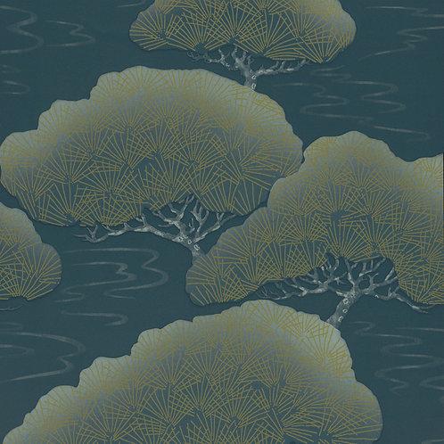 Pines - Blue Pine Mostra