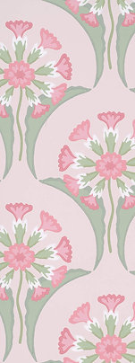 Hencroft Pink Primula
