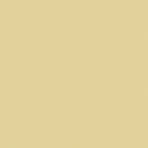 Culoare Stone-Pale-Cool (65)