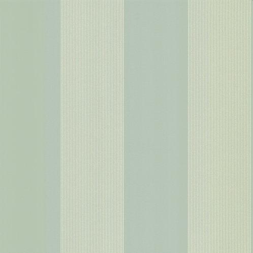 Elephant Stripe - Salvia Mostra