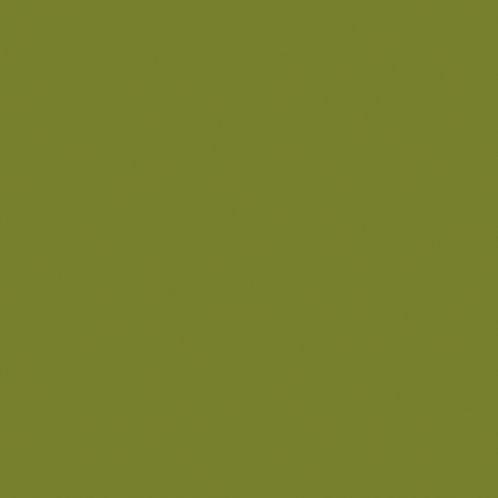 Culoare Citrine (71)