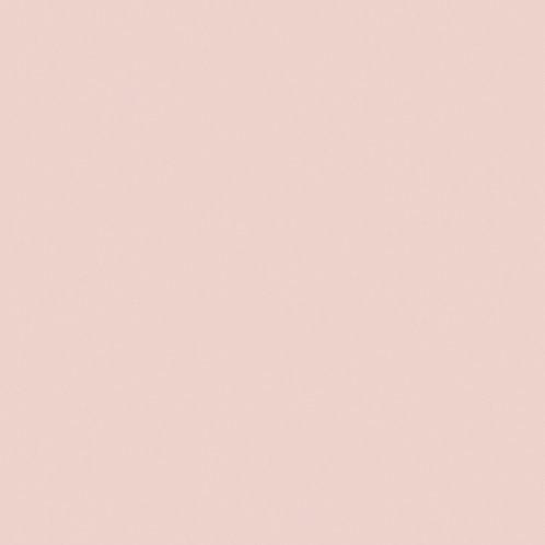Pink Slip (220) Mostra