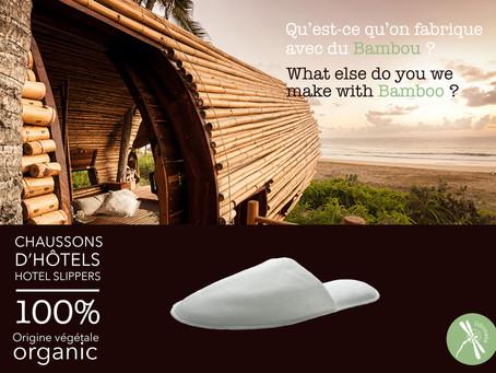 Biofootwear Company & le bambou