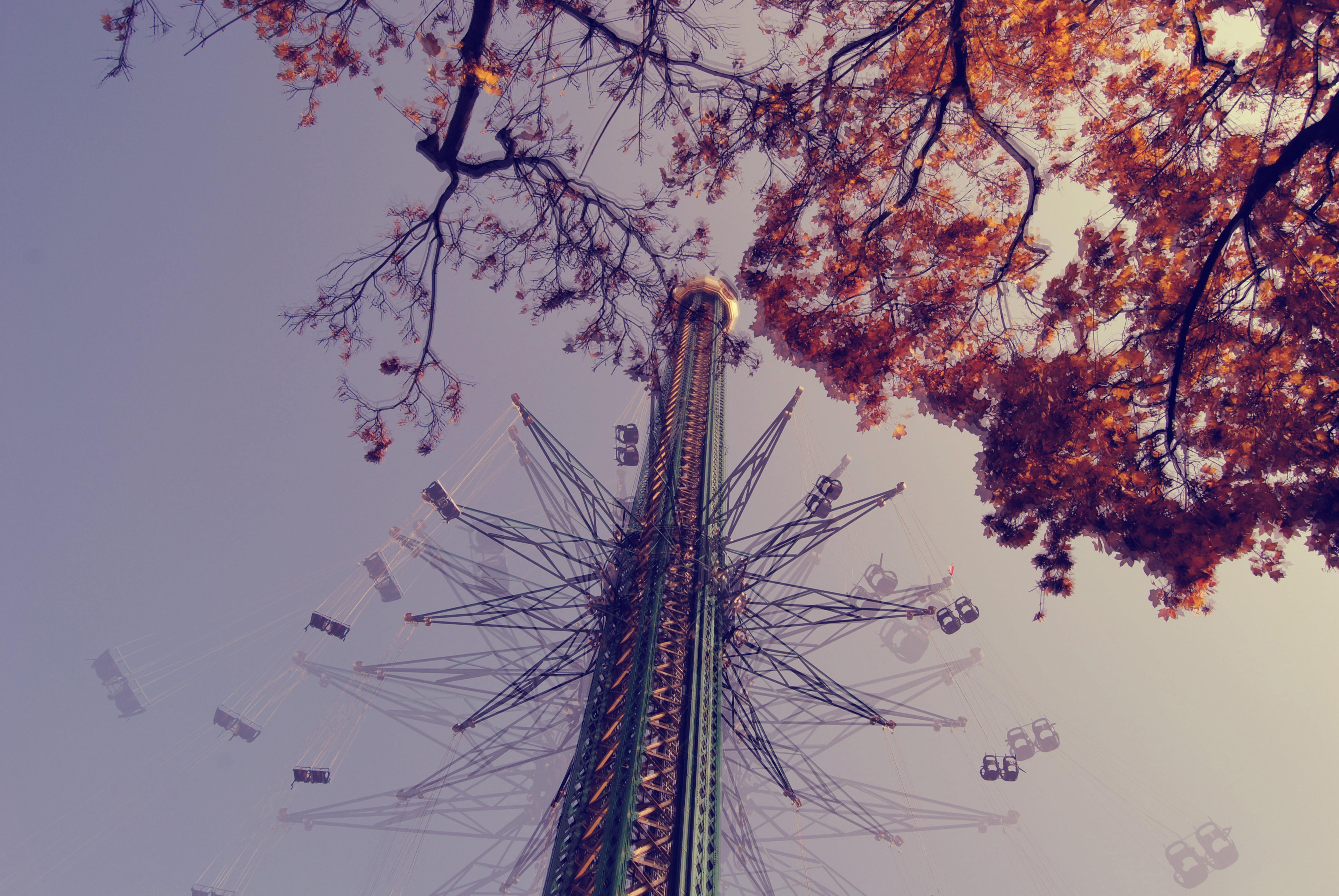 rides flying