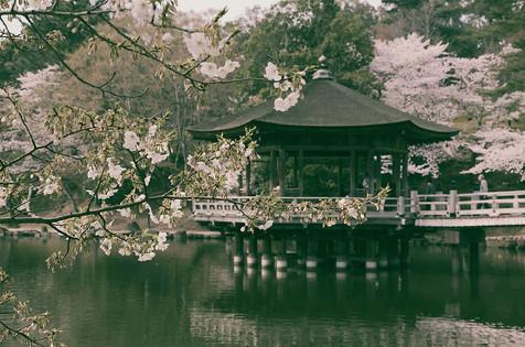 ukimidou+temple.jpg