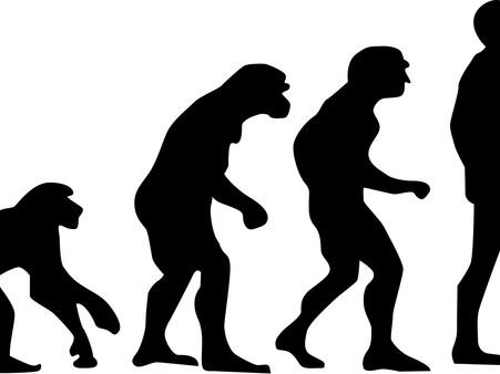 Miért nem szőrös az ember és miért szőrös a majom? Avagy mennyi a minimális mozgásszükségletünk?