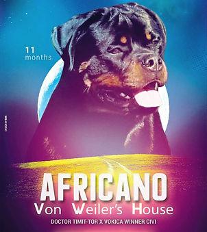 Africano Von Weier's House