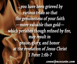 Trial by Fire: Embracing the Refining Process