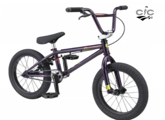 2020 GT PERFORMER Lil PURPLE 16″ for KIDS