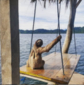 sloth photo.jpg