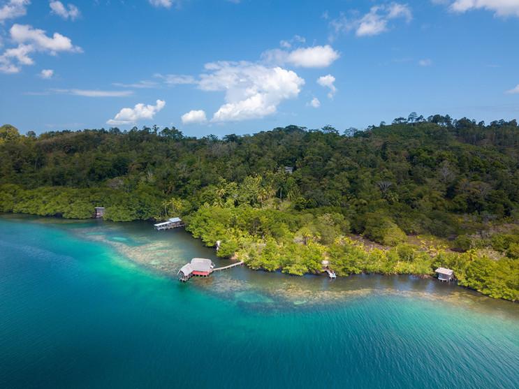 cocovivo reef.jpg