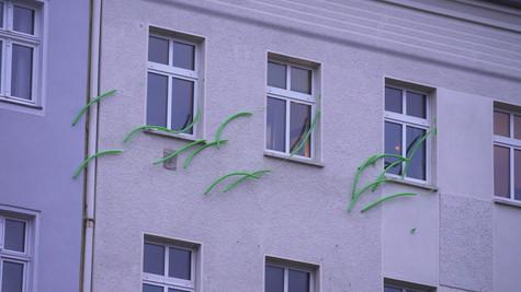 Matylda Krzykowski_1.11.1.jpg