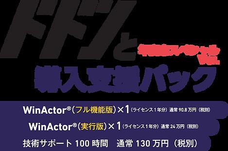 ドドンと導入支援パック 年度末スペシャルVer.