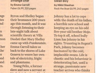 The Financial Times likes Swan Boy!