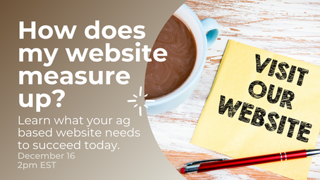 How Does My Website Measure Up?