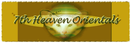 7th Heaven Logo
