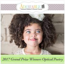2017 Grand Prize Winner