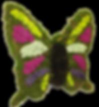 tableau végétal papillon