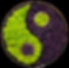 Ying/Yang stabilisé