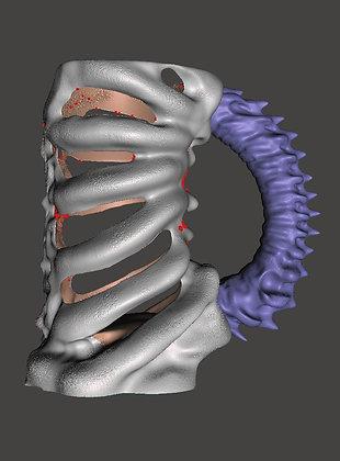 CRC Bone Cup 3d Model
