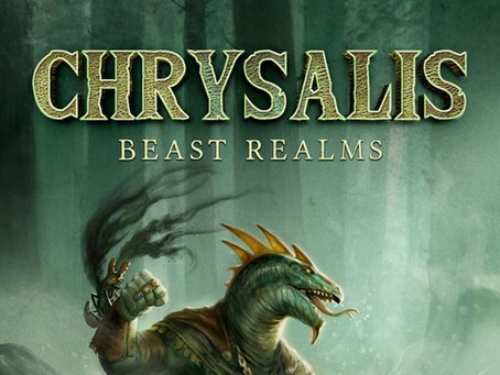Chrysalis, A LitRGP Fantasy:  Interview with the Author.