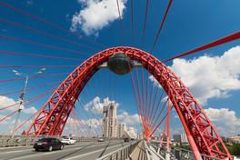 Живописный мост. Москва