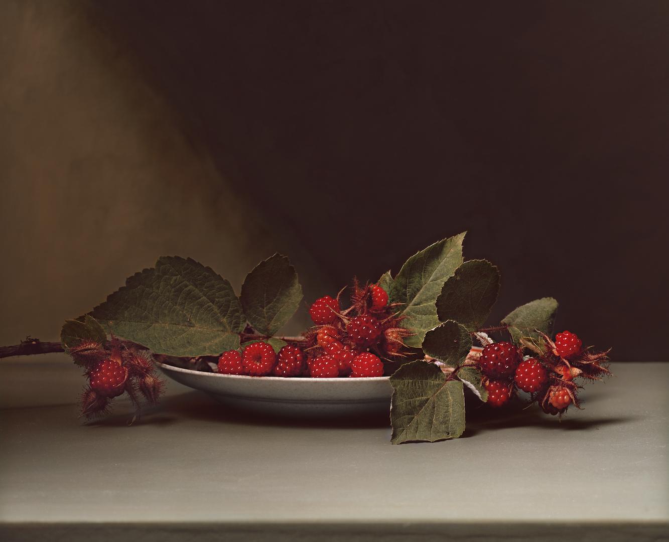 SharonCore_Blackberries.tif