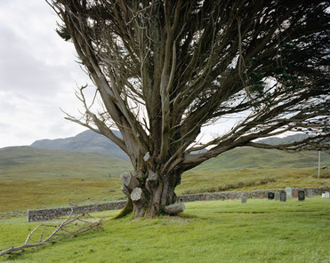 17796.8.17 Isle of Mull, Scotland 2017.j