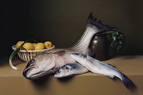 SharonCore_StillLifewithStripedBass.tif