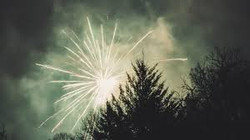 July 4th fireworks above tress