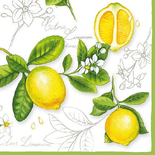 Ambiente Serviettes | Citrus