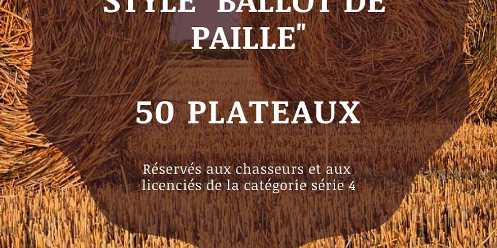 """MINI CONCOURS STYLE """"BALLOT DE PAILLE"""""""