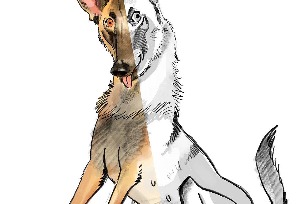 Caricature animal (base 15€)