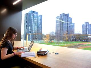 MBA: entenda por que curso vai além da categoria normal dos mestrados
