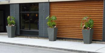 Gros-Pot-Beton-ambiance-2.jpg