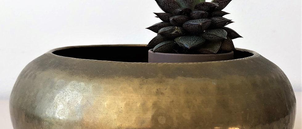 hammered, brass planter