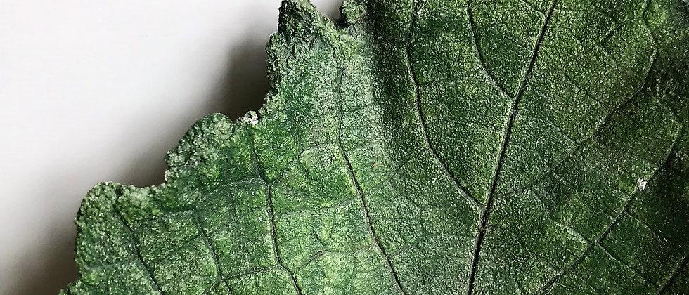 ceramic leaf