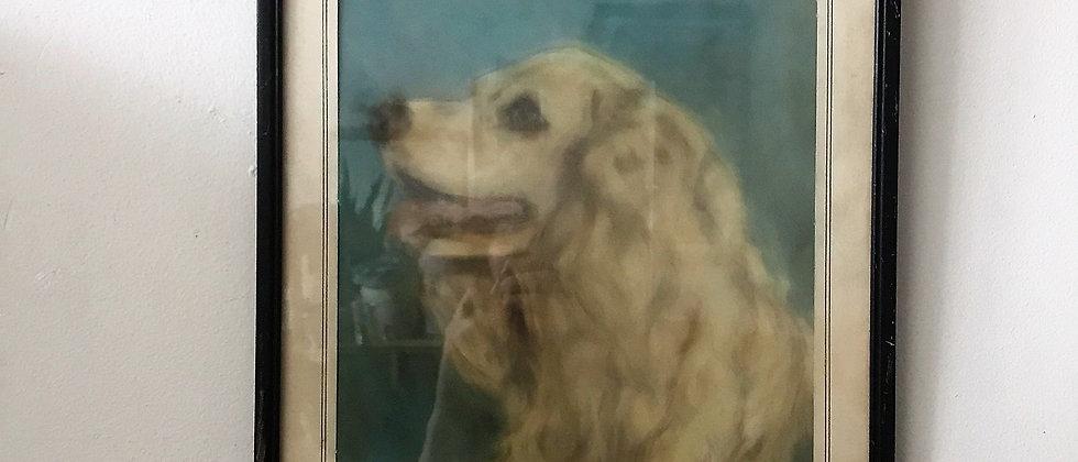 original pastel of dog, framed art